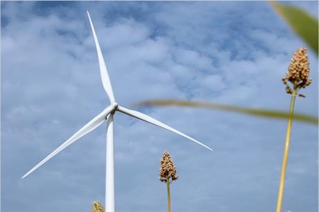 The Jawbone projects will use Suzlon's S111 2.1MW turbines