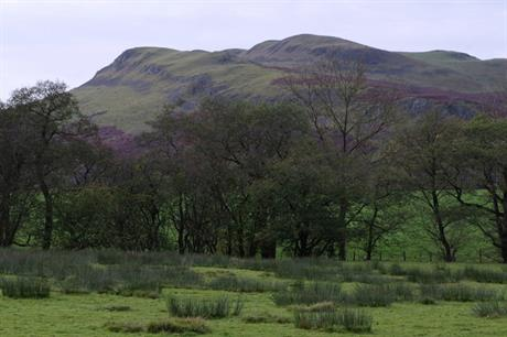 Llandegley Rocks (pic Andrew Hill via Geograph)