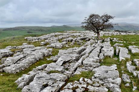Yorkshire Dales and Lake District boundary changes take effect – Yorkshire Dales National Park Planning