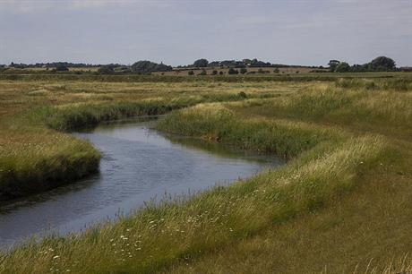 Hamford Water: 'no significant disturbance' from housing scheme