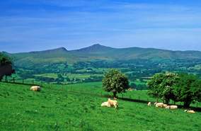 Rural areas: Lords' report calls for review of Housing Delivery Test impact