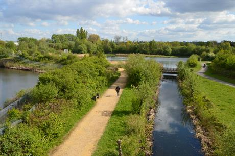 Wildlife habitats: government wants to allow developers to offset damage
