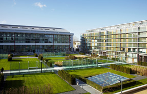Winning formula: The communal residents' garden at Highbury Square, once the home of Arsenal Football Club. Tom Campbell photo