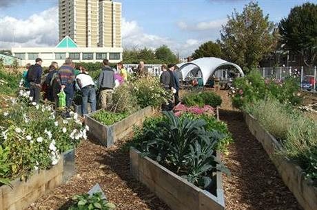 Growing areas can help encourage a sense of wellbeing (PIC Sustain)