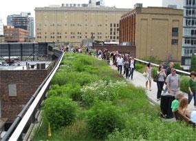 Green infrastructure: New York's Highline park