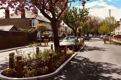Rain gardens at Greener Grangetown, in Cardiff, retain water and slow the flow into drains and rivers (PIC Greener Grangetown)