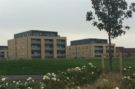 A village green is at the heart of the new higher density housing (PICS Simon Carne)