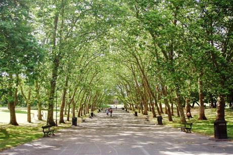 Trees in Crystal Palace Park [Pic credit: Ewan Munro via Flickr]