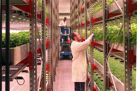 What is holding back controlled environment growing?