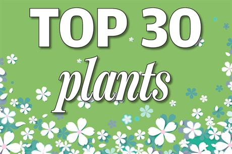 Top 30 Plants - Changes in popularity November/December 2020
