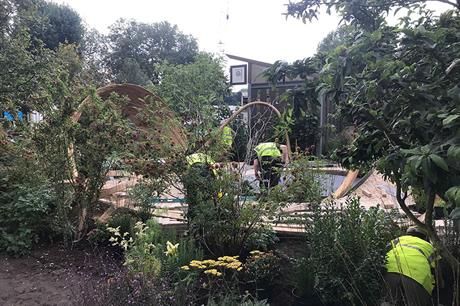 Early glimpse of first autumn RHS Chelsea Flower Show - GALLERY