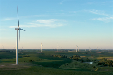 How wind power thrived in a year like no other