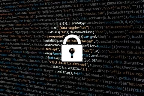 Underwriter launches cyber risk policy