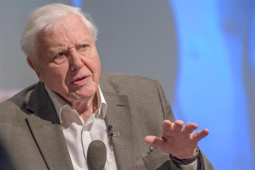 Lessons in messaging from David Attenborough