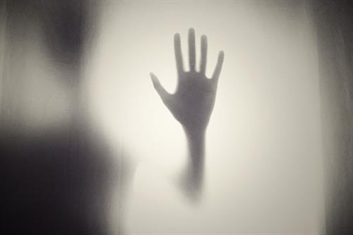 The 7 horror stereotypes of new directors - and how to avoid becoming one
