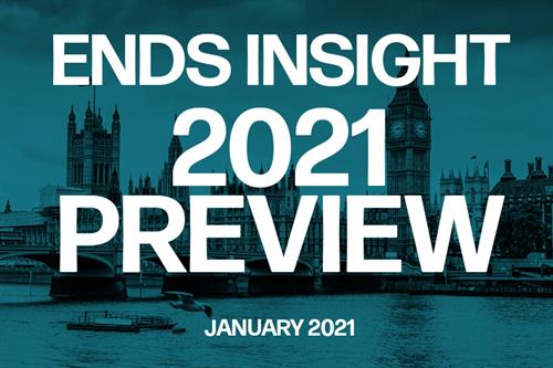 Insight report: 2021 preview