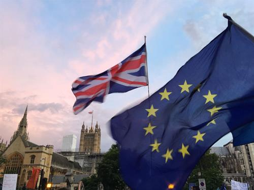 Environmental divergence: What could change after Brexit?