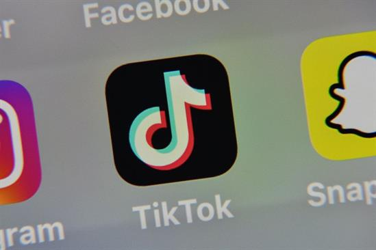 TikTok calls for social-media coalition to address spread of harmful content