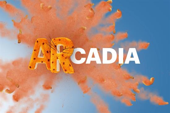 Arcadia: first clients include P&G, Verizon, WWE and Shake Shack