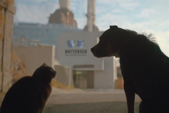 """Battersea Dogs & Cats Home """"Behind the scenes at Battersea"""" by Karmarama"""