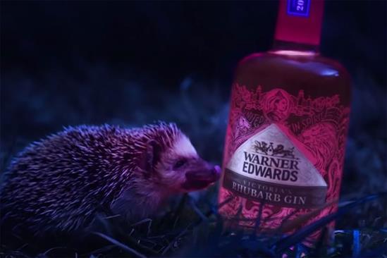 "Warner Edwards "" 'Tis the rhubarb gin season"" by Pablo"