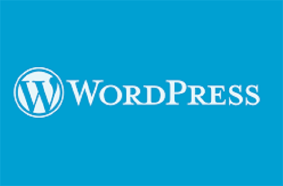 Patch for 'easy to exploit' WordPress XSS vulnerability