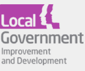 Local Government Improvement and Development