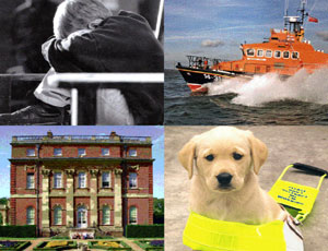 Clockwise from top left: NSPCC, RNLI, Guide Dogs and the National Trust