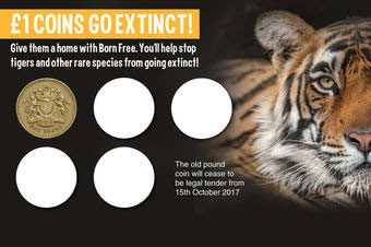 The Born Free coin-holder