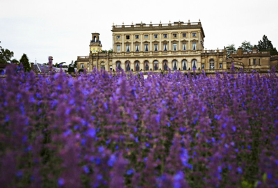 Jude Law's photograph of Cliveden House
