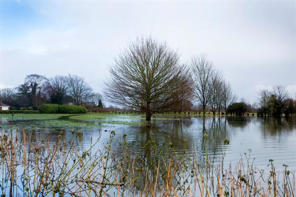 Floodin was widespread over the winter