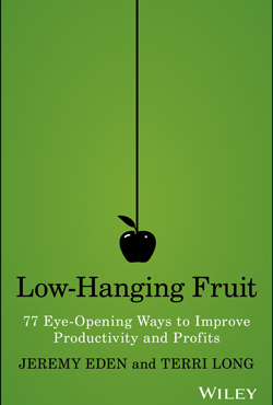 Low Hanging Fruit focuses on the authors' frustration with some management methods