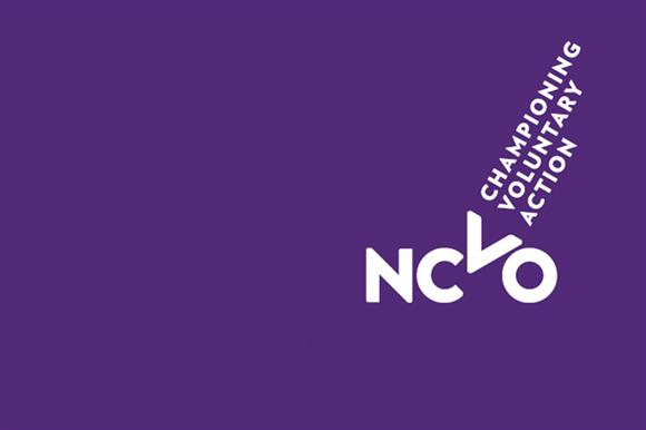 Image result for ncvo logo