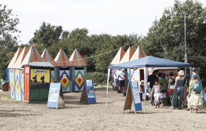 Charitable: toilets at this year's Glastonbury festival were decorated by WaterAid