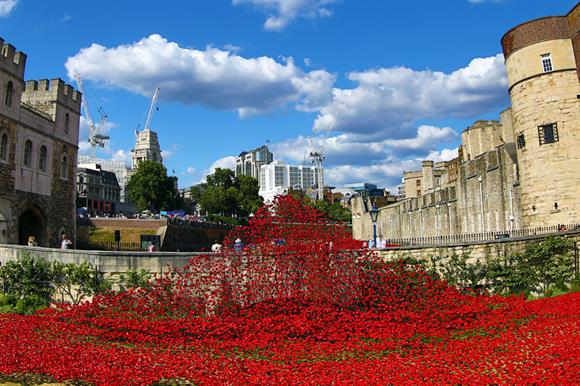 The installation at the Tower of London