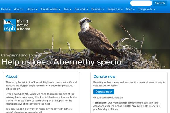 The RSPB's Keep Abernethy Special fundraising web page
