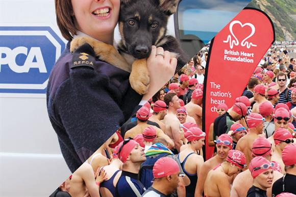 RSPCA and BHF: broke the law