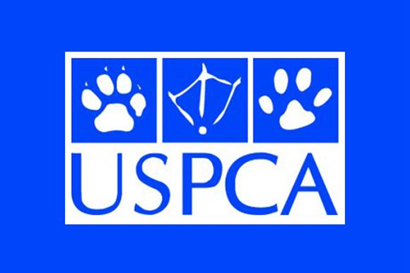 Ulster Society for the Prevention of Cruelty to Animals