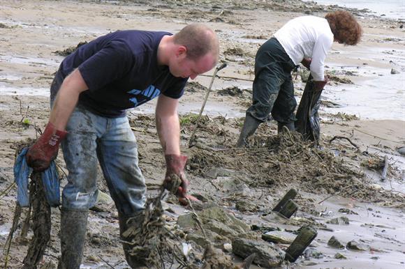 Volunteering: all levels declining