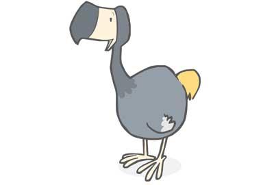 The Lonely Dodo