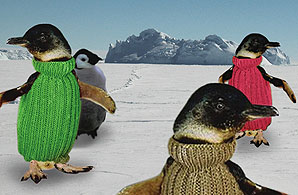 The march of the turtlenecks