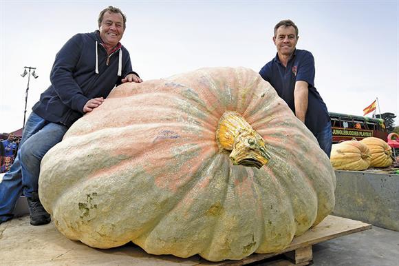 Pumpkin a la Paton