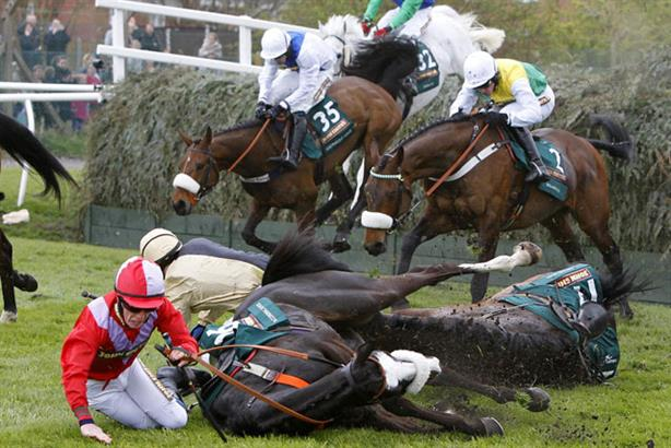 Not so Grand National: British Horseracing Authority handling of horse deaths