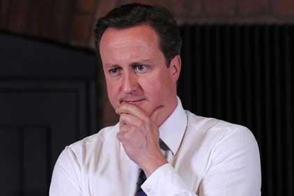 Cat fight: David Cameron fights excessive bonuses