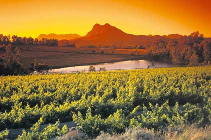 Grape expectations: With PR to work with Laithwaites Wine