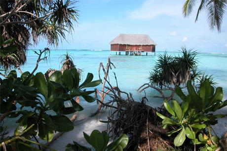 Controversy: Maldives tourism brief
