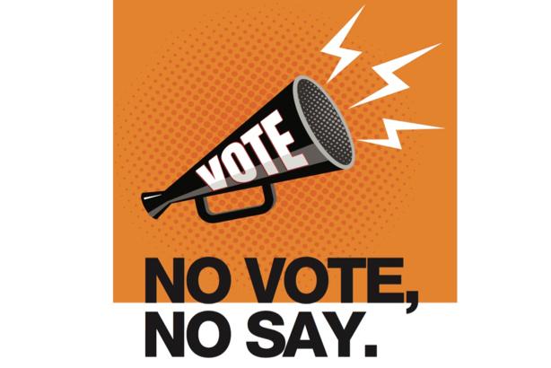 Image result for lambeth election logo