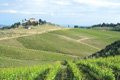 Tuscany: vineyard trips planned for journalists