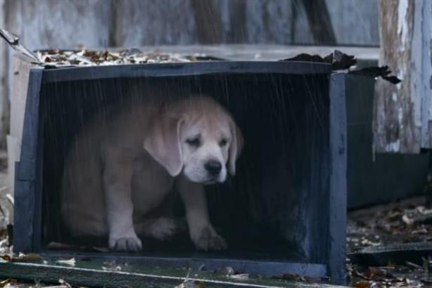 Budweiser's Lost Puppy Super Bowl spot was a hit on Twitter.