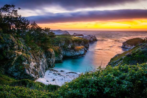 Point Lobos in California (Photo by David Gilliland, via Visit California's Facebook page).
